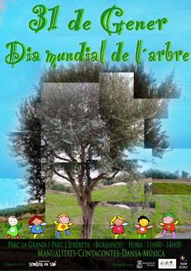 arbre20101.jpg